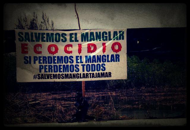 ¡Contra el ecocidio!
